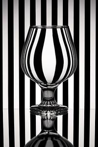 Zebra Refraction Glass