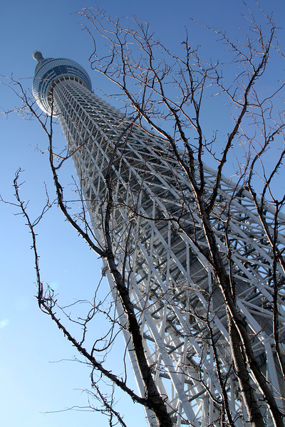「Created by nature and by man」 「生命と人工物」 @TOKYO SKYTREE