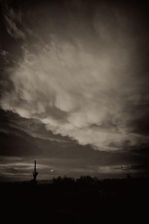 Storm Clouds and Saguaro