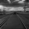Maricopa Tracks