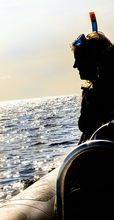 San Miguel Dolphins