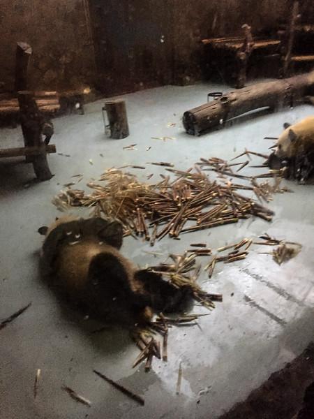Panda Enclosures in 36 degrees C