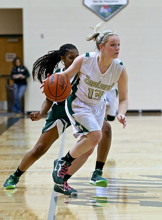 Zeeland West Girls vs. Reeths-Puffer Girls Basketball