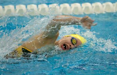 Zeeland Girls Swimming vs. Holland