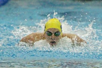 Zeeland Girls Swimming vs. West Ottawa