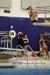 1m Diving