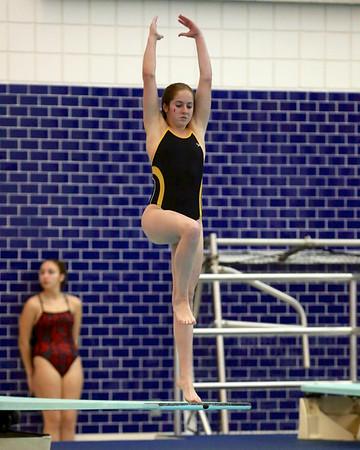 Zeeland Invitational - Girls Diving