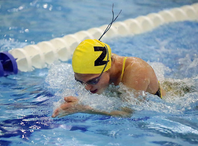 2014 Zeeland vs Holland Christian Girls Swimming