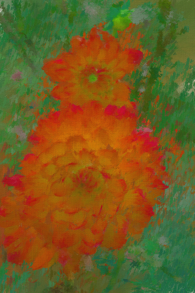 Monet's Happy Dahlias