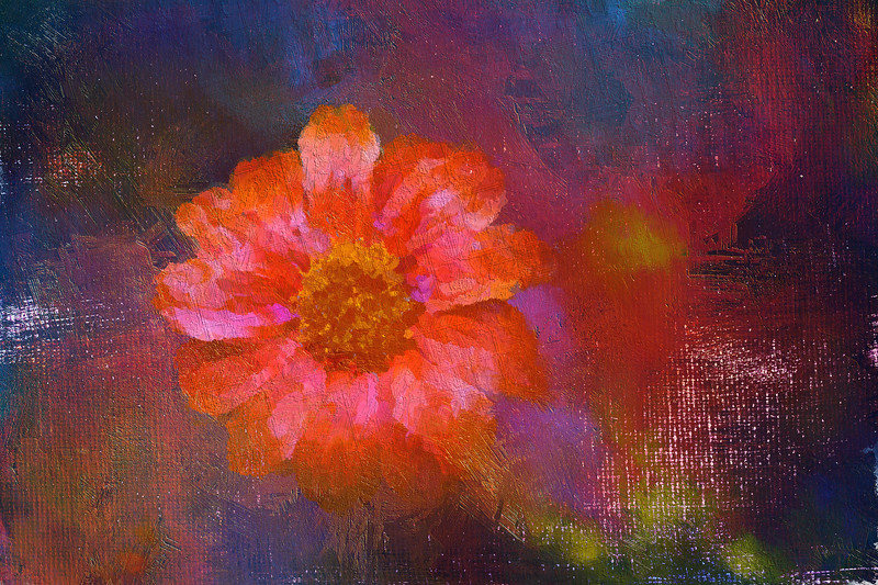 Monet's Flowers in the Rain