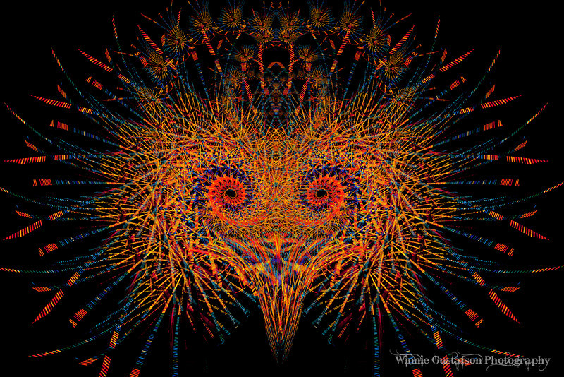 Fireworks Bird