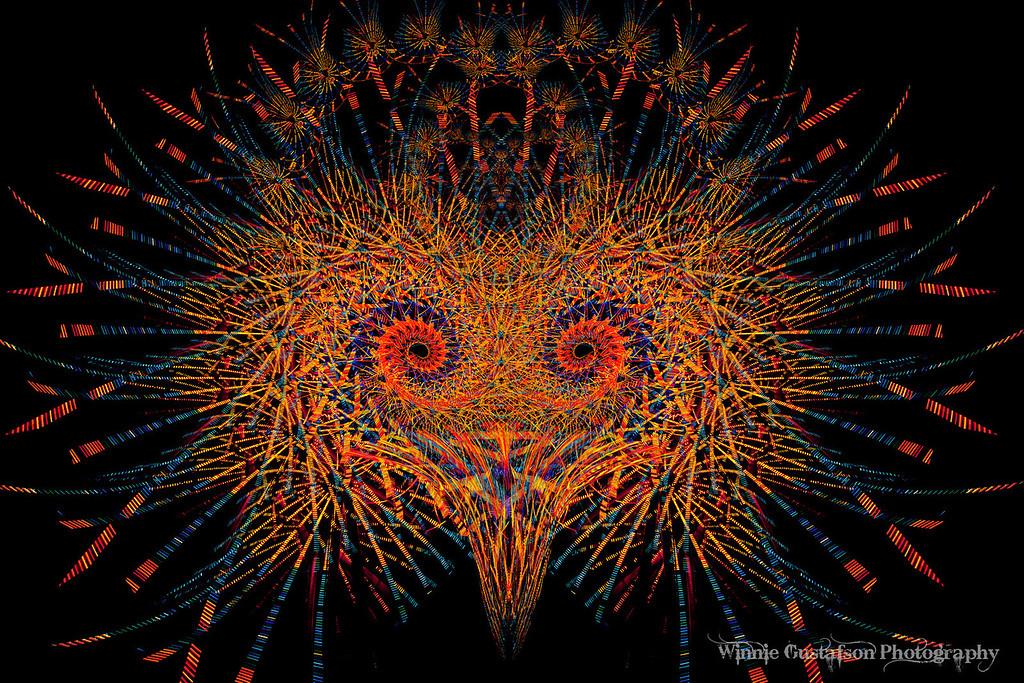 Fireworks Bird