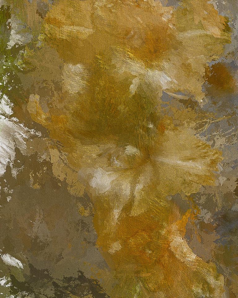 Painted Glads at Monet's Garden