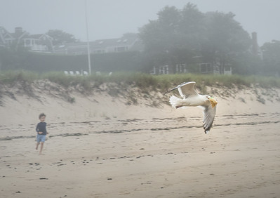 Beach Baggie Heist