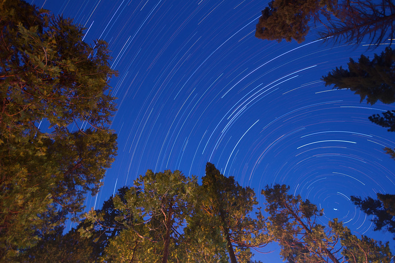 Star Trails Above Hodgdon Meadow Campground