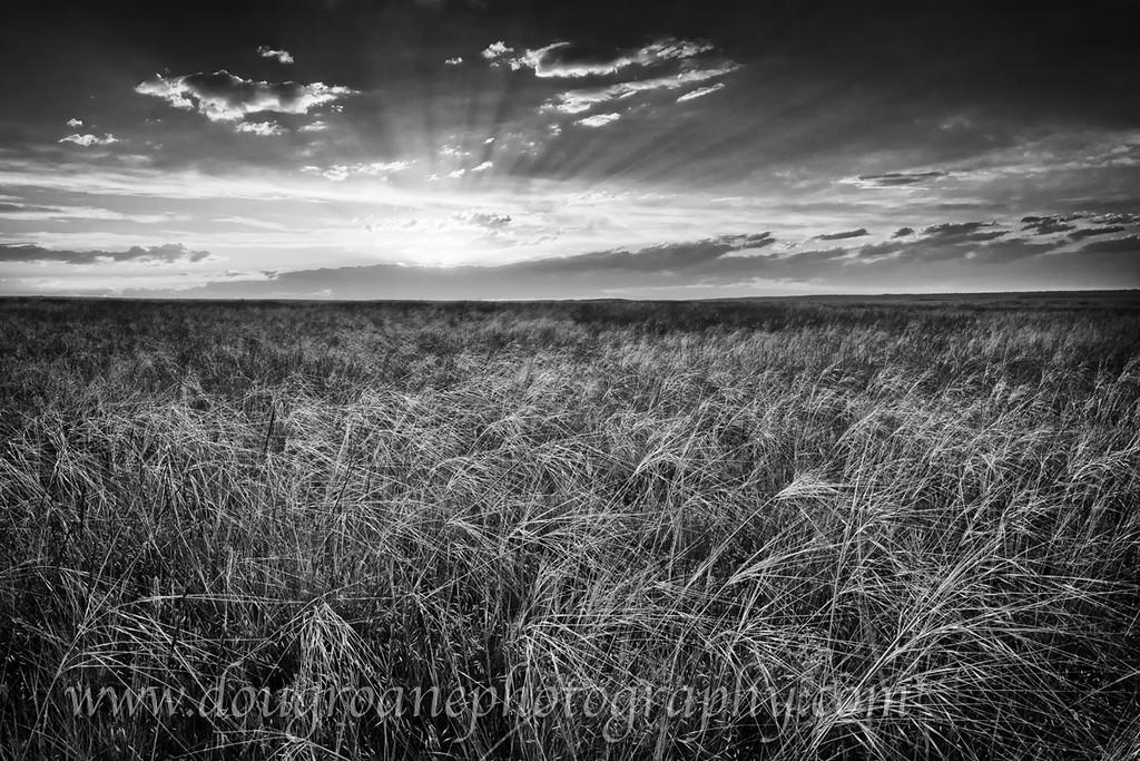 Prairie Sunset, Billings Heights