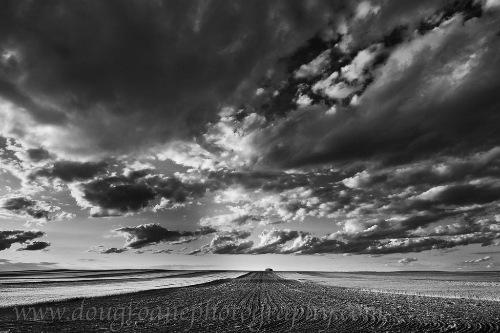 Farmland Under a Big Sky, off Hwy 3, Billings, MT