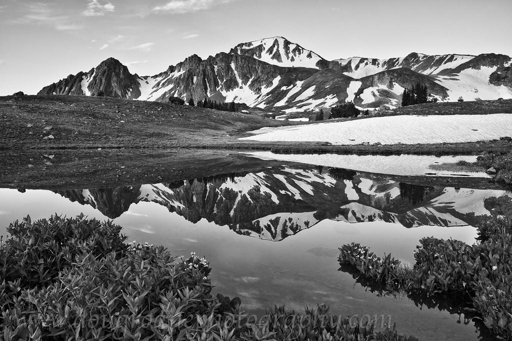 Echo Peak relected in a pond, Hilgard Basin, Lee Metcalf Wilderness, MT