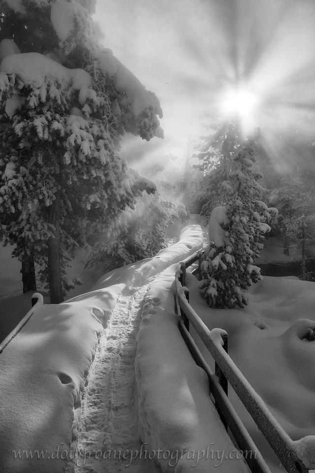 Snowy Path, Norris Basin, Yellowstone National Park
