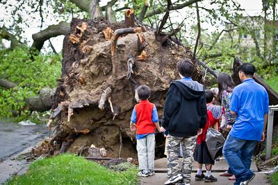 North Minneapolis Storm Damage