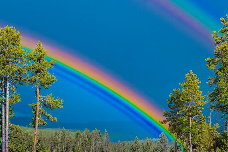SmugMug Title - Rainbow