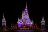 Cinderella's Castel at Night - Walt Disney Fl
