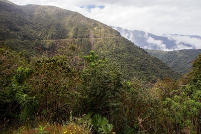 Scenery, Yanacocha, Ecuador 27 October 2013