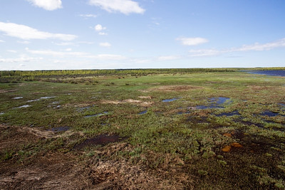 Nature reserve, Liminka, Finland 28 May 2012