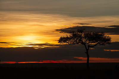 Sunset, Masai Mara, Kenya 15 October 2011