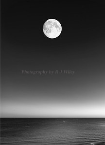 Moon over the Gulf 2507 bw