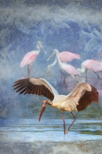 Woodstork and Spoonbills  art piece