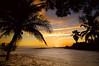 Sunset 893RJWiley