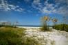 Beach 661RJWiley