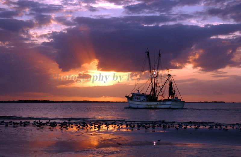 Shrinpboat 2832