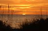 Sunset 7805