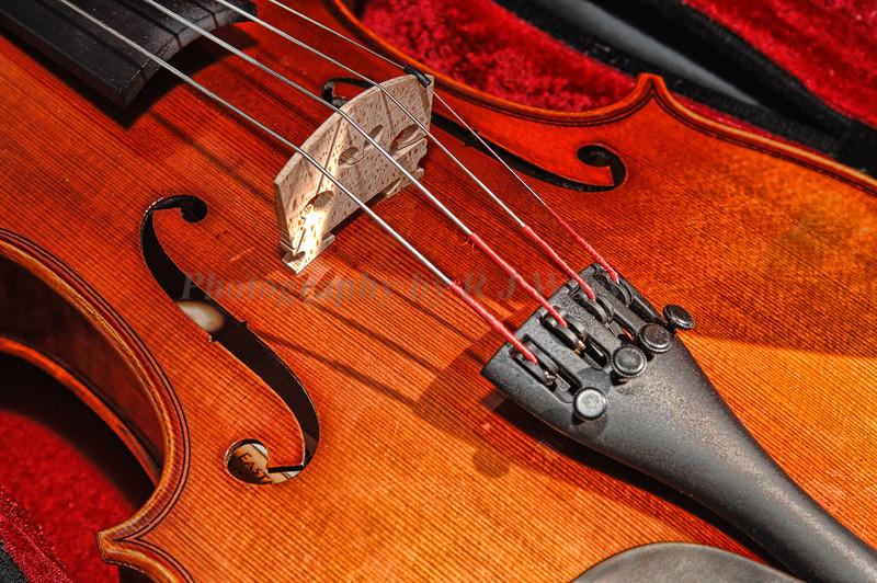 Violin 2237