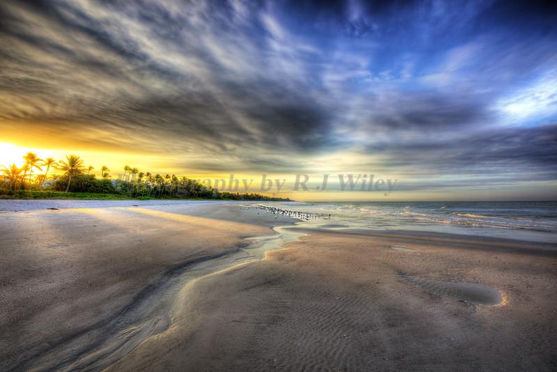 Beach Naples 4493