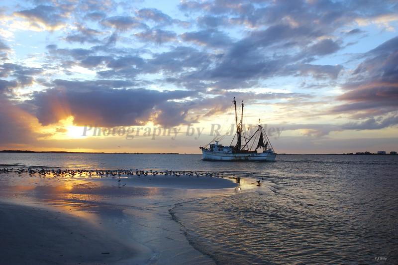 Shrimpboat2828