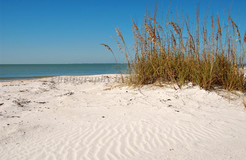 Beach 5691