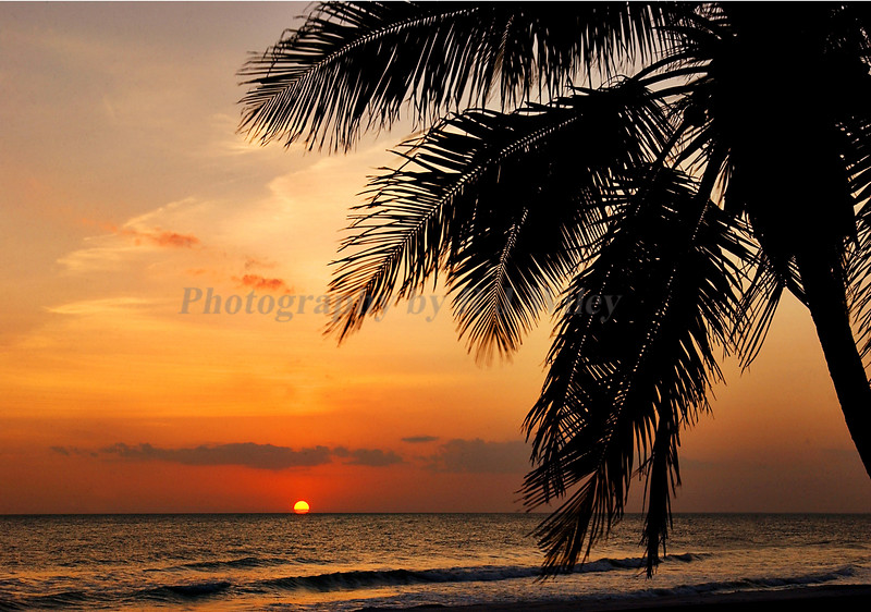 Sunset 5755 7X10