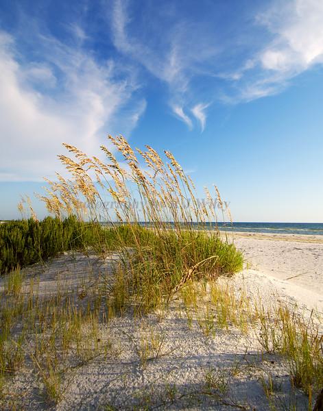Beach 759RJWiley