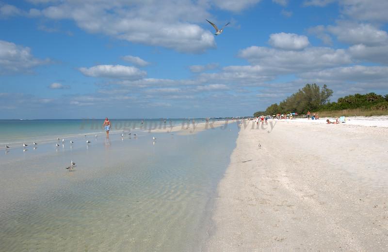 Beach  1315