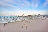 Naples Pier 3826 a