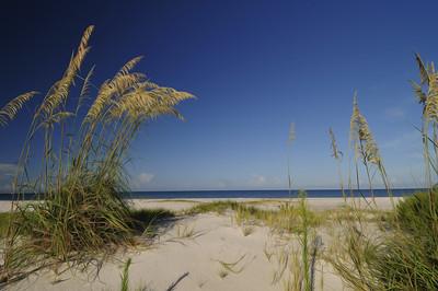 Beach 7107 a