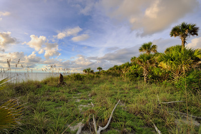 Beach 5893 a copy