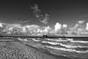 Naples Pier 6129 bw©rjwiley