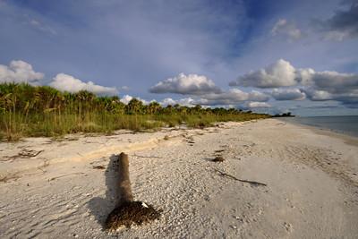 Beach 5851 a  copy