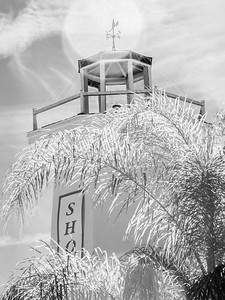 Tarpon Springs, FL .