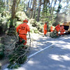 Fire crews clear brush