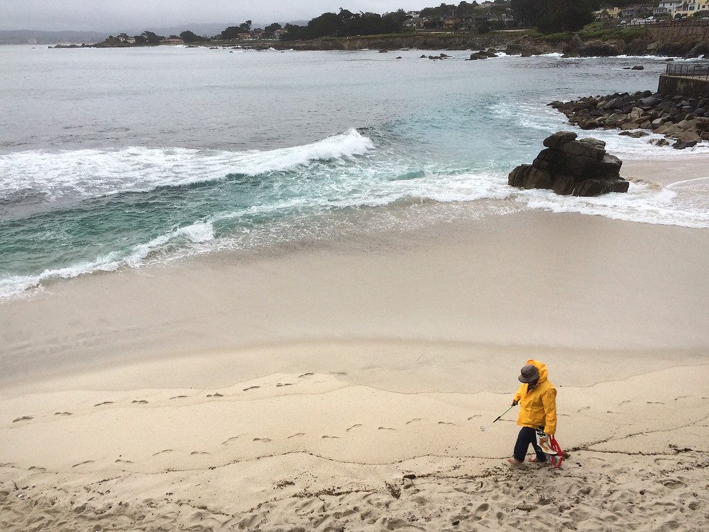 . A man searches for at shells on the beach after the rain at Lovers Point in Pacific Grove on Friday April 7, 2017. (David Royal - Monterey Herald)